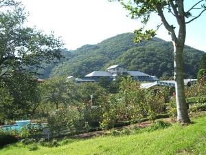 花巻温泉バラ園2013-10-13-085