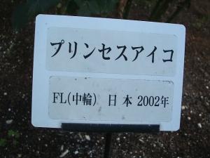 花巻温泉バラ園2013-10-13-115