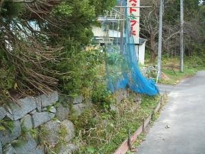 家庭菜園2013-10-21-026