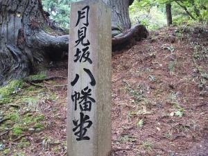 中尊寺菊祭り2013-10-26-007