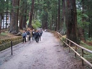 中尊寺菊祭り2013-10-26-006