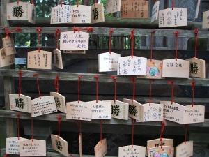 中尊寺菊祭り2013-10-26-017