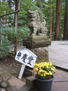 中尊寺菊祭り2013-10-26-015
