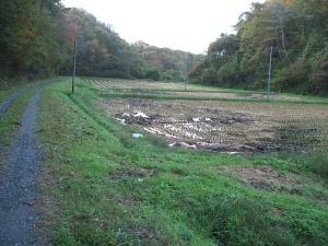 道路御人足2013-10-27-006