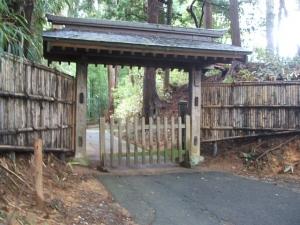 中尊寺菊祭り2013-10-26-024