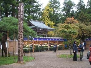 中尊寺菊祭り2013-10-26-051