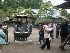 中尊寺菊祭り2013-10-26-050