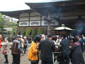 中尊寺菊祭り2013-10-26-045
