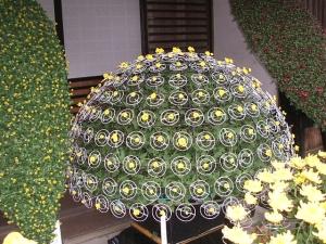 中尊寺菊祭り2013-10-26-057