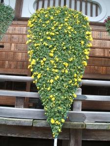中尊寺菊祭り2013-10-26-053