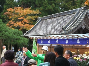 中尊寺菊祭り2013-10-26-059