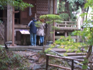 中尊寺菊祭り2013-10-26-070