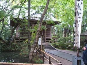 中尊寺菊祭り2013-10-26-069