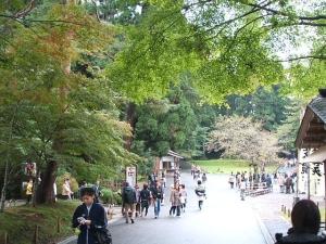 中尊寺菊祭り2013-10-26-077