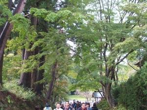中尊寺菊祭り2013-10-26-076