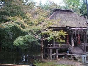 中尊寺菊祭り2013-10-26-085