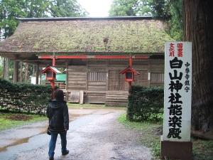 中尊寺菊祭り2013-10-26-095