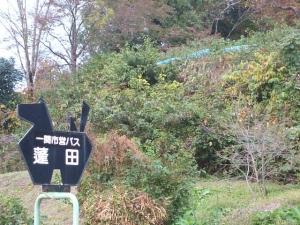 新波神社例大祭2013-11-03-135