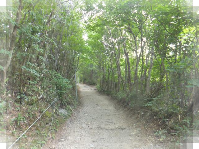 石鎚山10
