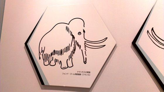 yukaIMAG0361.jpg