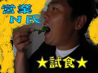 N氏 試食