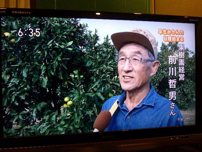 NHK収穫