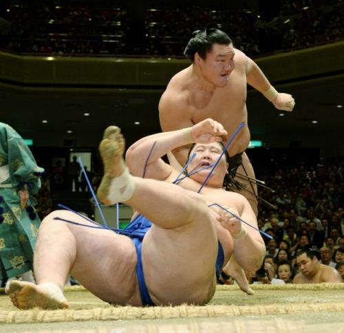 【大相撲】逸ノ城って競走馬に例えると?