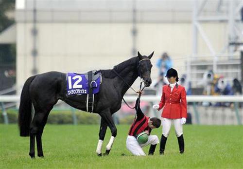【エイシンフラッシュ】が何故か人気の種牡馬らしい