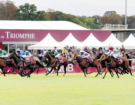 【競馬】で来年はどの馬が凱旋門いくの?
