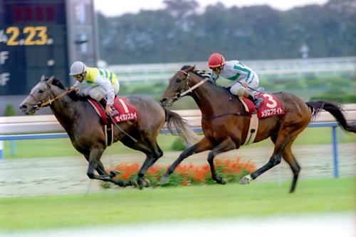 【競馬】なぜ最近の毎日王冠と京都大賞典は微妙になったのか