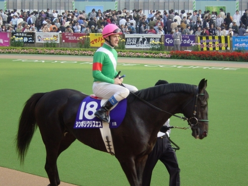 【競馬】藤沢和雄厩舎は何故落ちぶれたのか