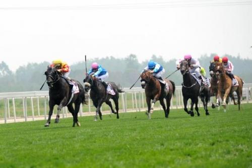 【競馬】「中国競馬会」設立 来年には国際レース開催へ