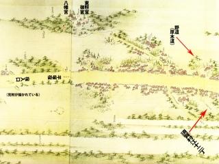 平塚・須賀村への道