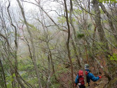 1頂上~カラン 登山道