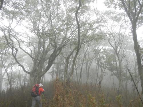 0915霧