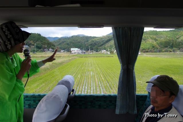 バスから見た田んぼ