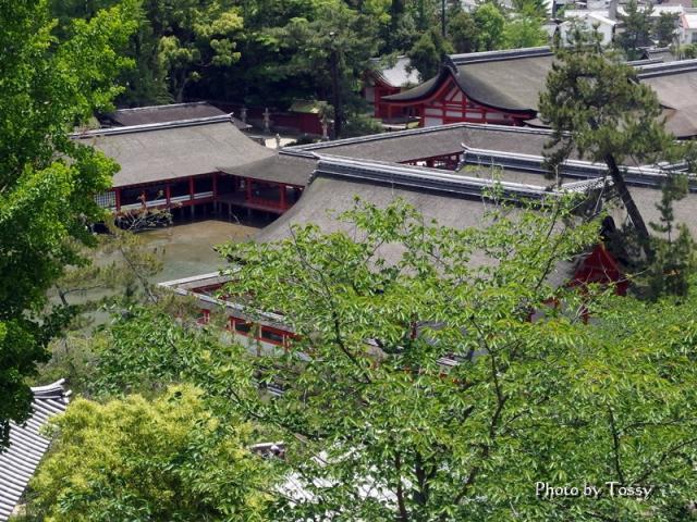 厳島神社 俯瞰