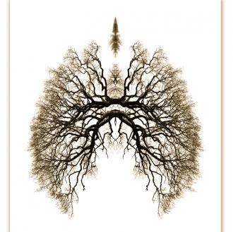 breathe_convert_20140916195946.jpg