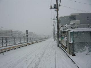 14_粉雪_2