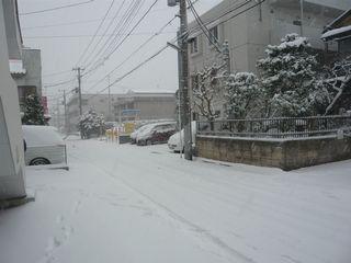 14_粉雪_3