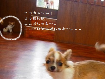20130610_631374 (1)
