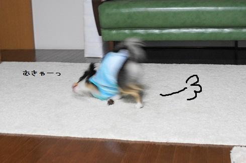 a179.jpg