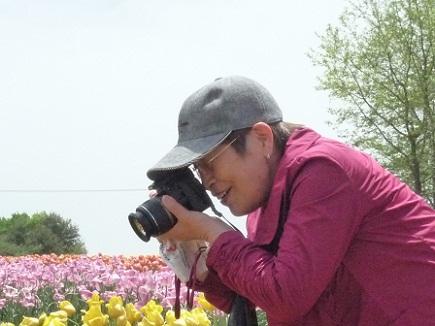 5132011世羅高原農場tulipS3
