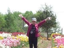 5132011世羅高原農場tulipSS6