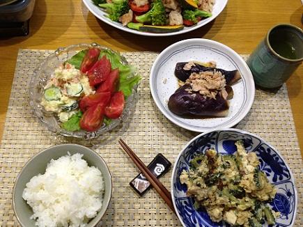 5192013夕食S