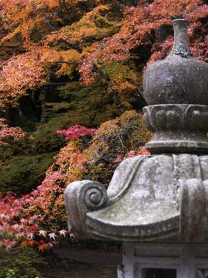 紅葉に燃ゆる石灯籠