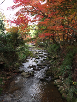 佛通寺川の紅葉シーズン