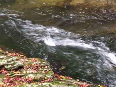 秋深し佛通寺川の流れ