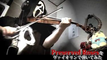 革命機ヴァルヴレイヴ Preserved Roses をヴァイオリンで弾いてみた