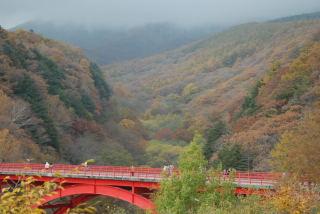 八ヶ岳 2012 057_01
